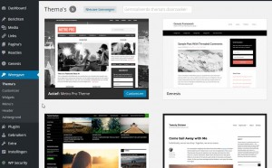 WordPress geinstalleerde thema's